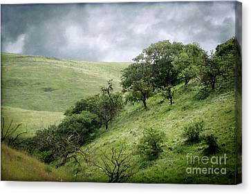 The Green Hills Of Home Canvas Print by Ellen Cotton