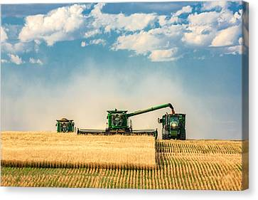 Harvest Canvas Print - The Green Machines by Todd Klassy