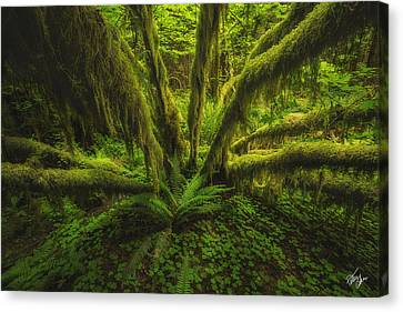 The Green Monster Canvas Print by Peter Coskun