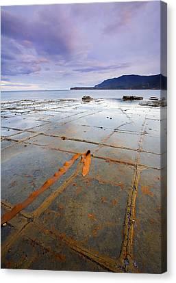 Grid Canvas Print - The Grid by Mike  Dawson