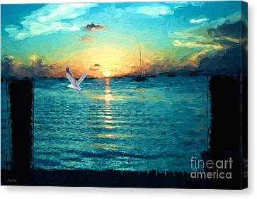 The Gull Canvas Print by Judy Kay