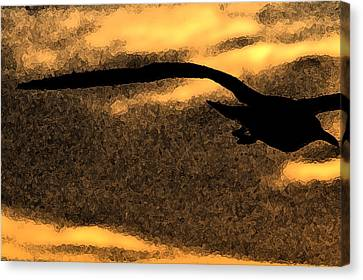 The Gull Canvas Print by William Jones