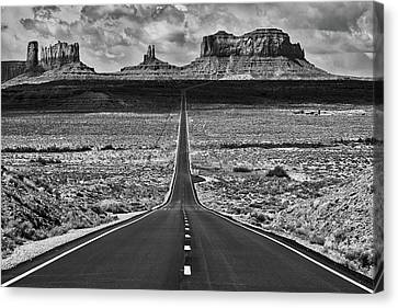 Canvas Print featuring the photograph The Gump Stops Here by Darren White