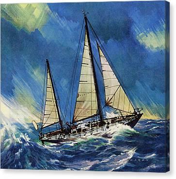 The Gypsy Moth Canvas Print