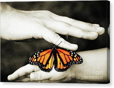 The Hands And The Butterfly Canvas Print by Andee Design
