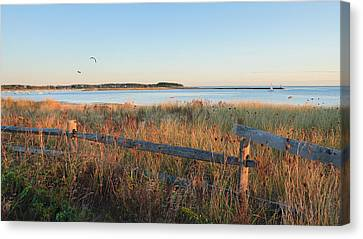The Harbor Canvas Print by Bill Wakeley