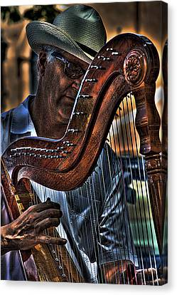 The Harp Player Canvas Print by David Patterson