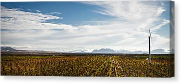 The Harvest Is Over Canvas Print by Swift Family