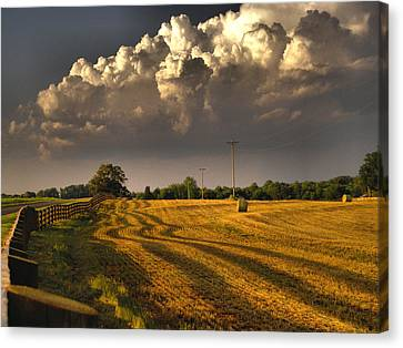 The Hayfield Canvas Print by David Walsh
