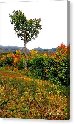 Canvas Print - The Heart Of New Hampshire by Catherine Reusch Daley