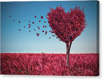 The Heart Tree Canvas Print