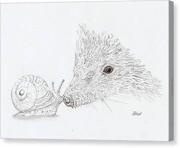 The Hedgehog And The Snail Canvas Print