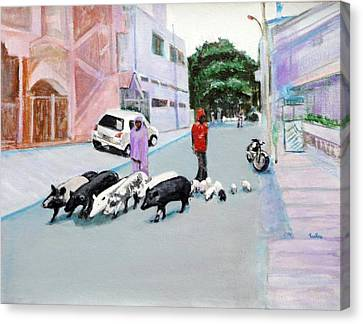 The Herd 5 - Pigs Canvas Print by Usha Shantharam