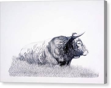 The Herdmaster Canvas Print by Howard Dubois