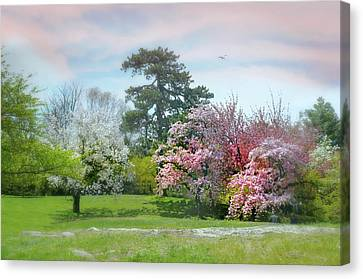 Canvas Print featuring the photograph The Hidden Garden by Diana Angstadt