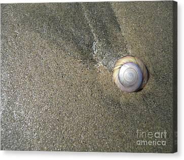The Hidden Treasures Of The Sand Canvas Print by Anna Eigler