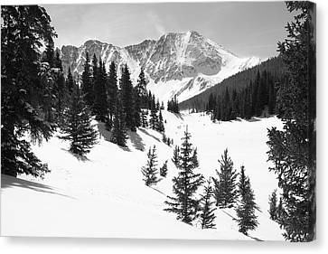 The High Country Canvas Print by Eric Glaser