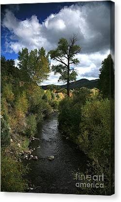 The High Road To Taos Canvas Print by Timothy Johnson