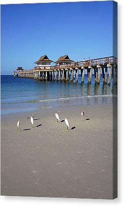 The Historic Naples Pier Canvas Print