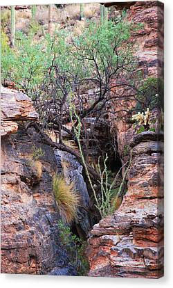Canvas Print featuring the photograph The Hole - Mount Lemmon by Donna Greene