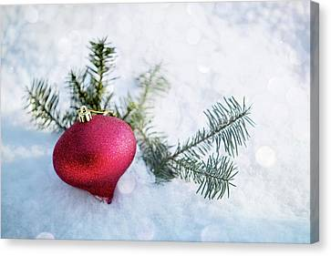 Canvas Print featuring the photograph The Holidays by Rebecca Cozart
