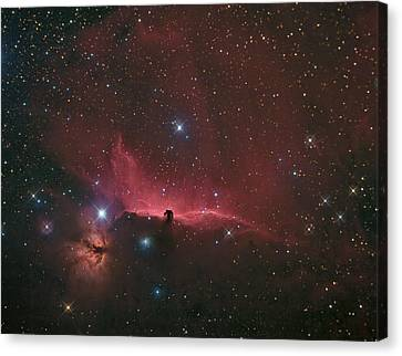 The Horsehead Nebula Canvas Print