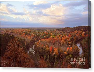 Fall Trees Canvas Print - The Horseshoe Bend Of The High Rollaways In Michigan by Terri Gostola