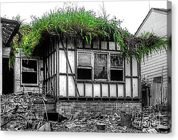 The House Of The Triffids By Kaye Menner Canvas Print