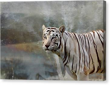 Canvas Print featuring the photograph The Hunter by Gary Smith