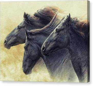 The Immortals Canvas Print