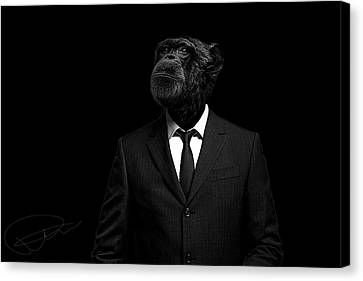 Chimpanzee Canvas Print - The Interview by Paul Neville