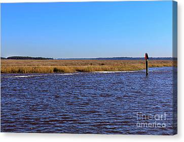 The Intracoastal Waterway In The Georgia Low Country In Winter Canvas Print by Louise Heusinkveld