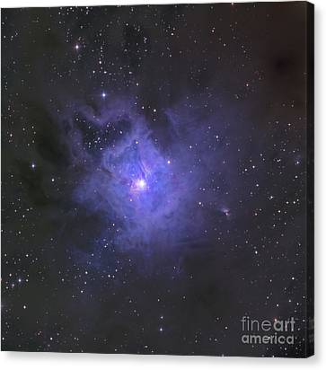 The Iris Nebula Canvas Print by Ken Crawford