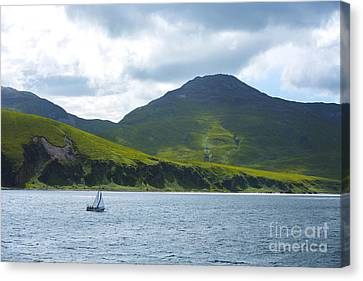 The Isle Of Jura, Scotland Canvas Print by Diane Diederich