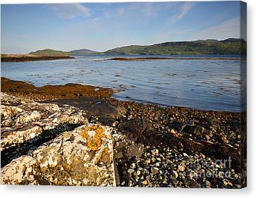 The Isle Of Mull Canvas Print by Nichola Denny