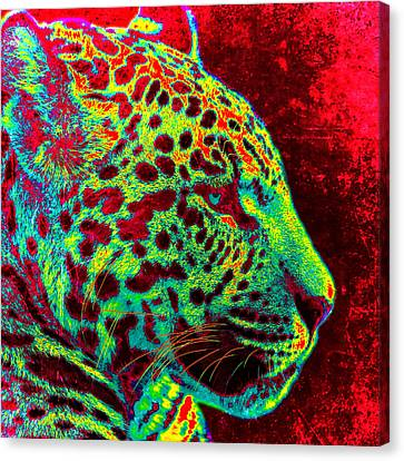 The Jaguar Canvas Print by Stacey Chiew