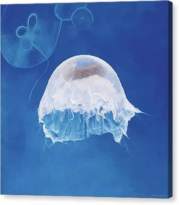 Under The Sea Canvas Print - The Jellyfish Nursery by Anne Geddes