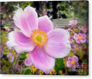 The Jewel Of The Garden Canvas Print