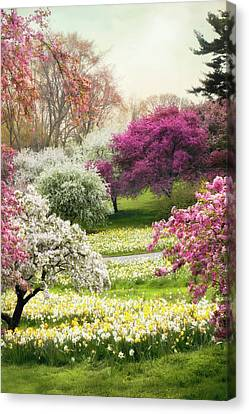 Canvas Print featuring the photograph The Joy Of Spring by Jessica Jenney