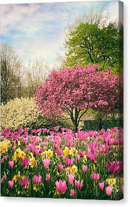 Canvas Print featuring the photograph The Joy Of Tulips by Jessica Jenney