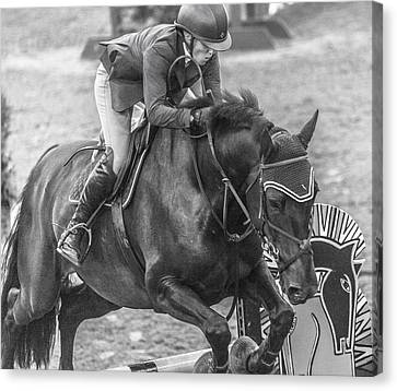 Braids Canvas Print - The Jumpers by Betsy Knapp