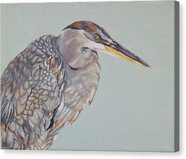 The Juvenile Canvas Print by Jason M Silverman