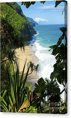 The Kalalau Trail Of Kauai Canvas Print