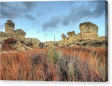 Canvas Print featuring the photograph The Kansas Badlands by JC Findley