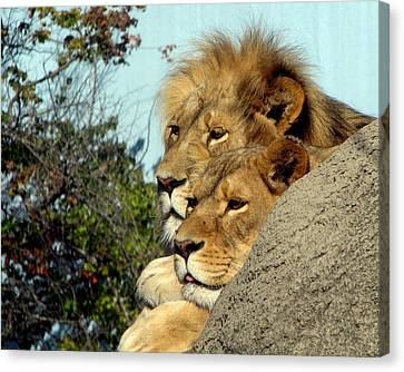 The King And Queen 1 Canvas Print