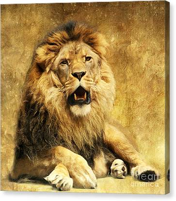 Lion Canvas Print - The King by Angela Doelling AD DESIGN Photo and PhotoArt