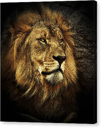 Canvas Print featuring the mixed media The King by Elaine Malott