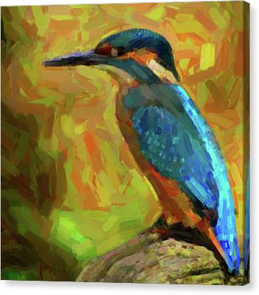 The Kingfisher Canvas Print by Tilly Williams