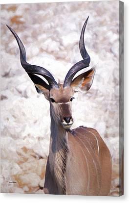 The Kudu Portrait 2 Canvas Print by Ernie Echols