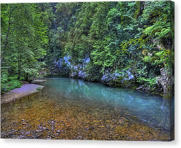 The Kupa River Canvas Print by Don Wolf